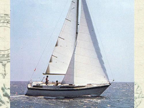 puma 37